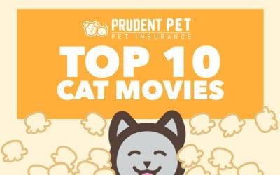 Top 10 Cat Movies
